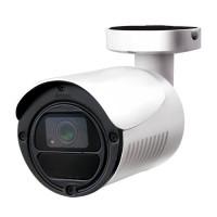 AVTech DGM1105 Bullet IP-Camera 2 Megapixel Infrarood